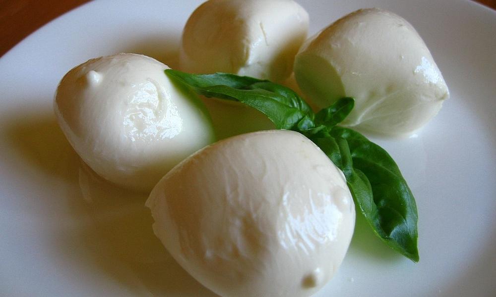 Сыр «Моцарелла»